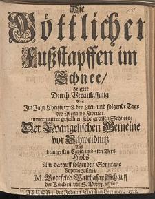 Die Göttlichen Fußstapffen im Schnee Zeigete Durch Veranlassung Des Im Jahr ... 1718. den 8ten ... Februar unvermuttet gefallnen sehr grossen Schnees... Gottfried Balthasar Scharff